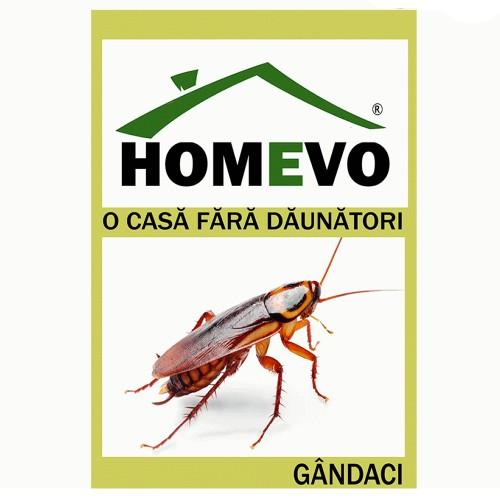 HomeEvo - EXIT FORTE  Gel Gandaci 5g.