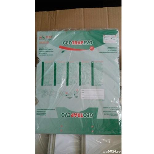 Capcane din carton, cu adeziv si feromoni pentru atragerea si lipirea insectelor