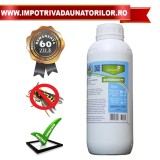 Evosect–Insecticid concentrat impotriva viespilor